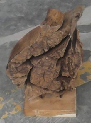 Erosion root on stand 44 cm
