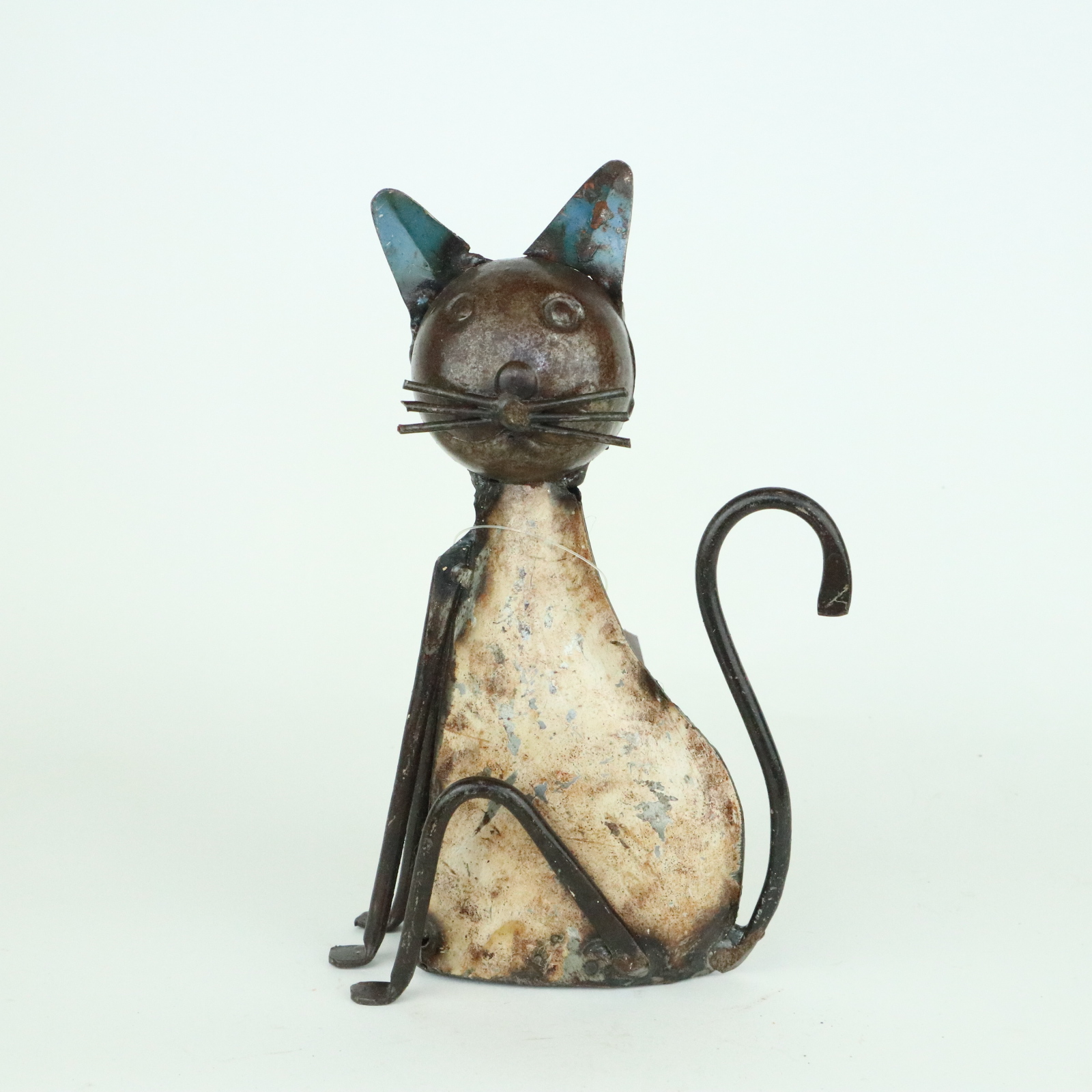 Cat 19 cm